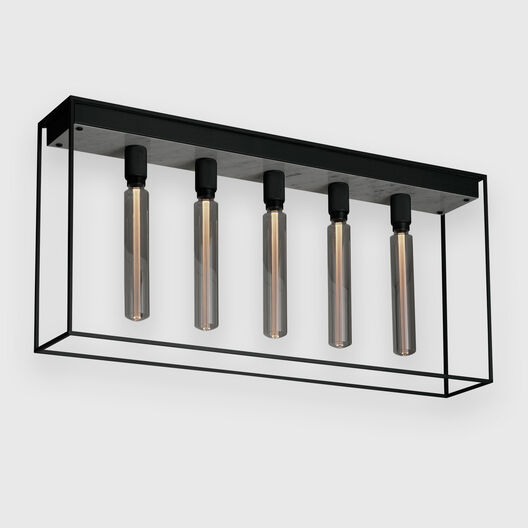 Caged Ceiling Lamp 5.0