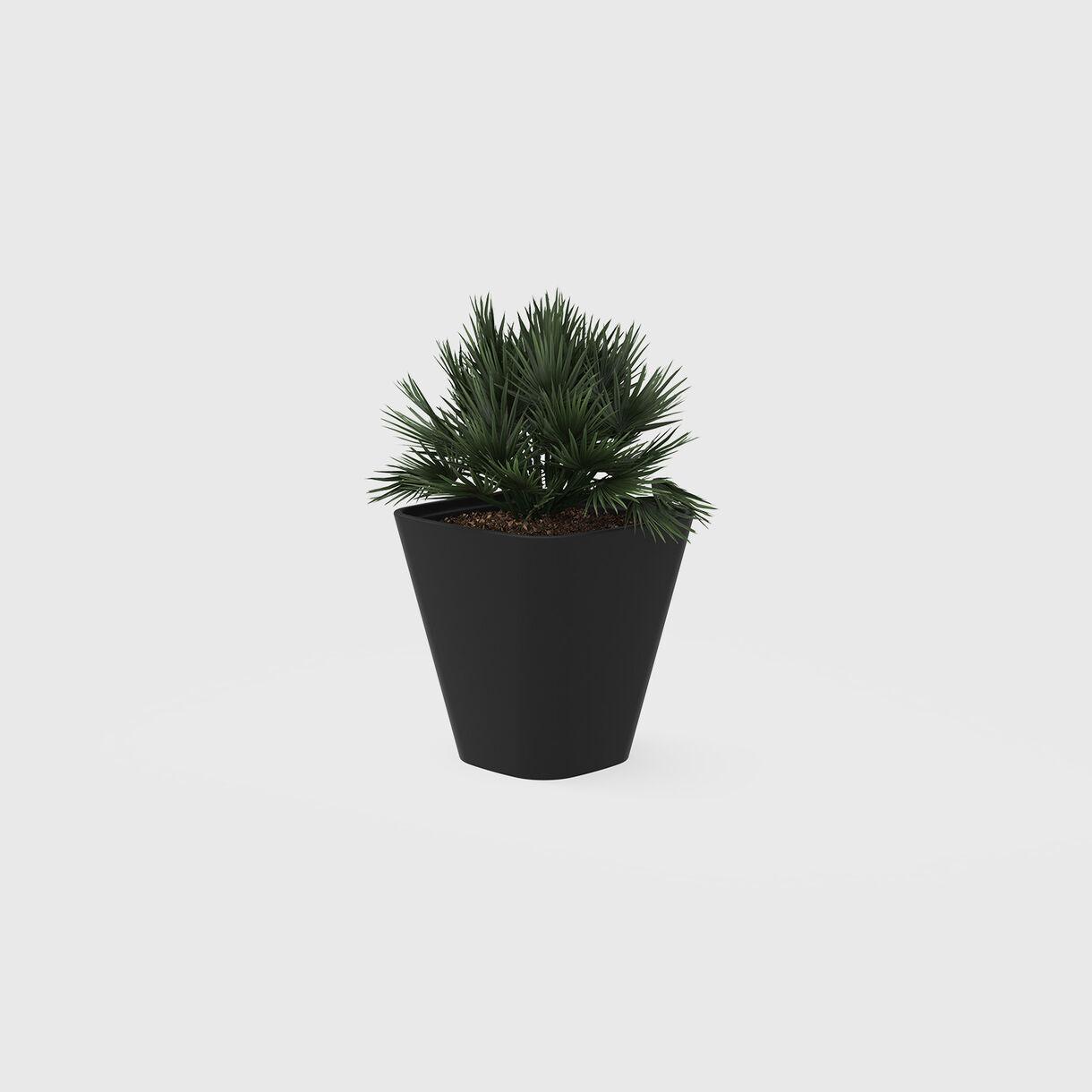 Kono Planter, 560