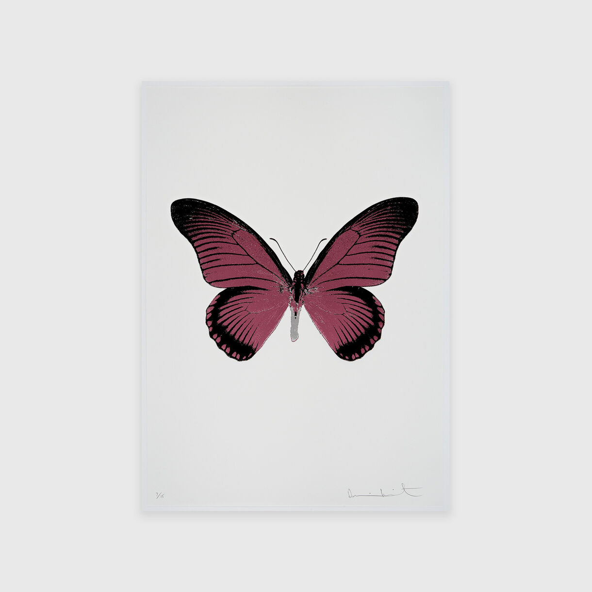 The Souls IV – Loganberry Pink, Raven Black, Silver Gloss, Damien Hirst