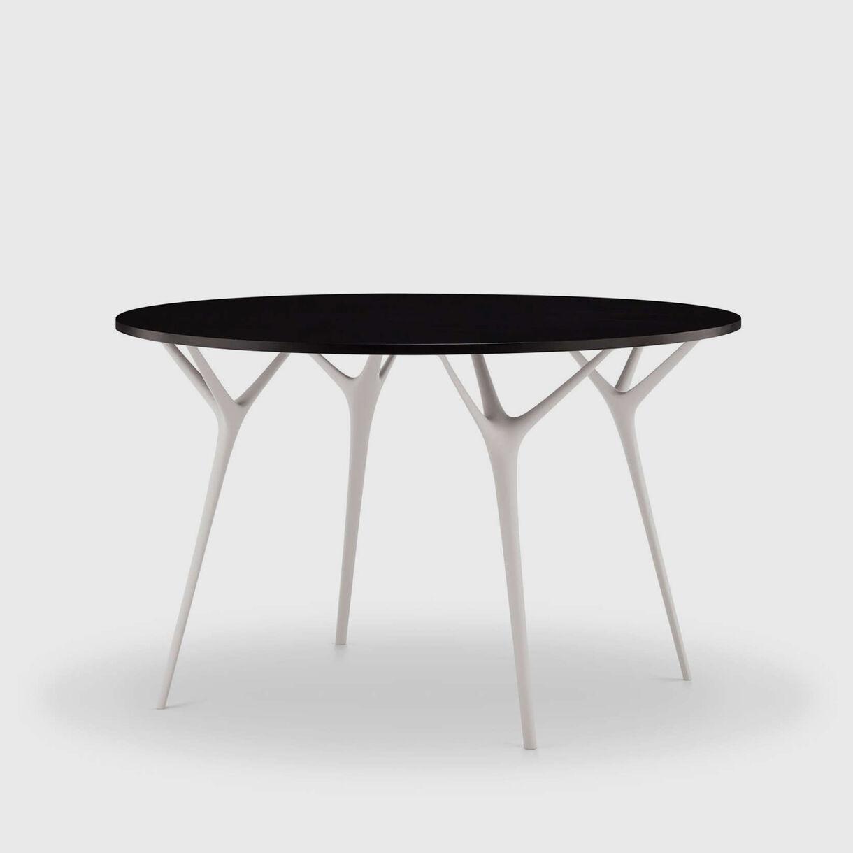 Stellarnova Round Table
