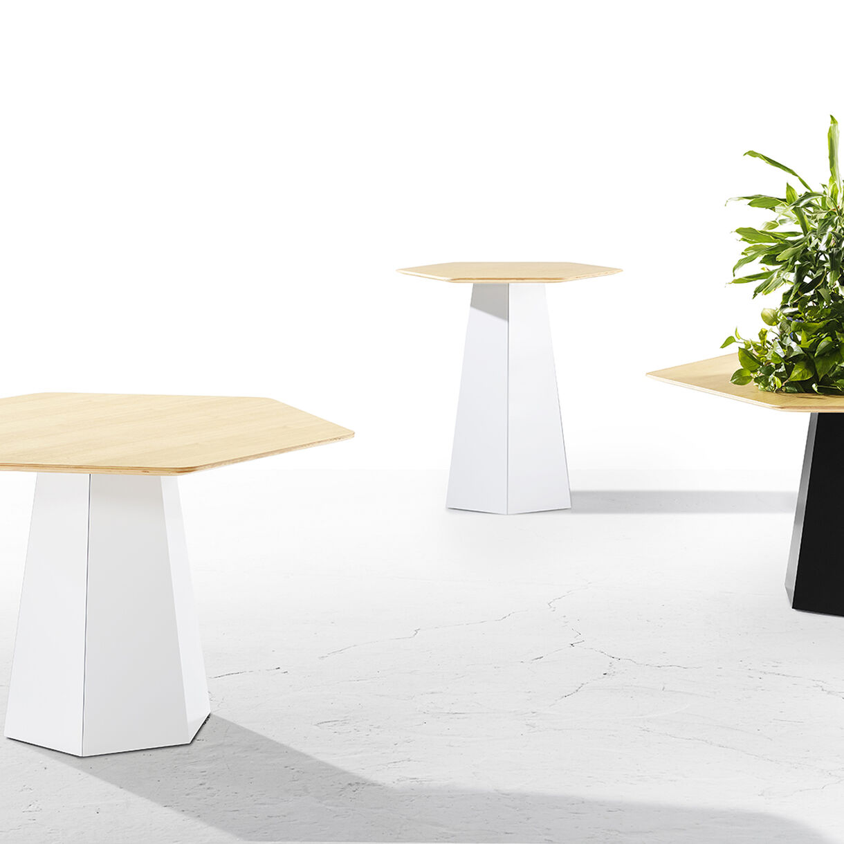 Hext Tables, Lifestyle