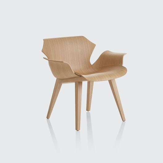 Petal Lounge Armchair